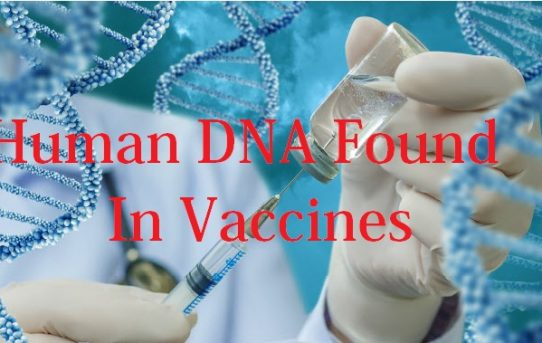 Human DNA Found In Vaccines