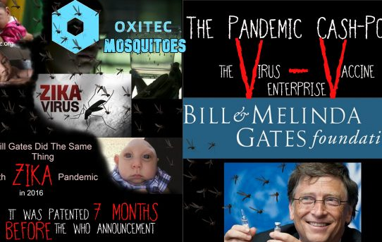Breaking News: Bill Gates Did The Same Thing With The Zika Pandemic; Zika Vaccine was Patented 7 Months Prior To The WHO Pandemic--Massive Article (Warning To Floridians)