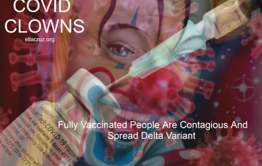 COVID-Clowns: Fully Vaccinated People Are Contagious And Spread Delta Variant To The Unvaccinated Says CDC- by Great Game India