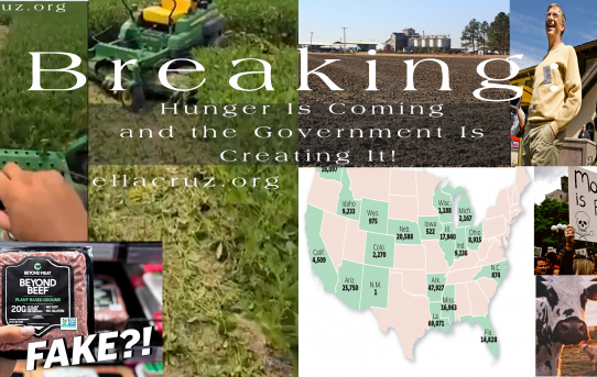 Breaking: Hunger Is Coming and the Government Is Creating It! Extensive Article